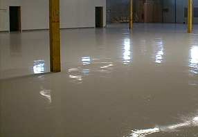 Rockford Custom Epoxy Flooring